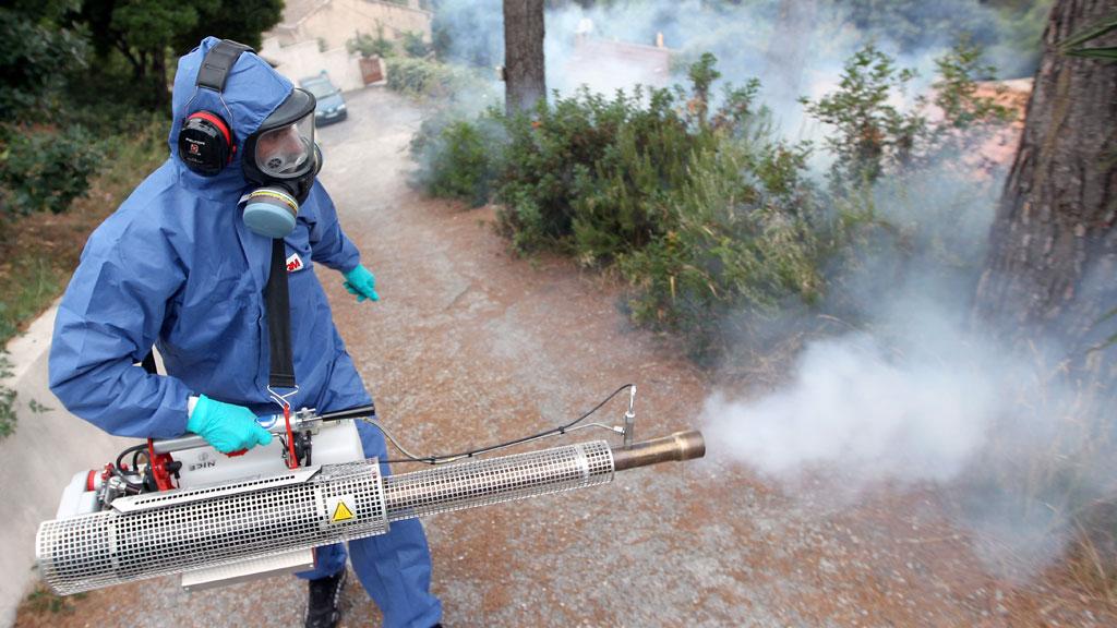 رش المبيدات الآمنة ومكافحة الحشرات المزعجة لدى أفضل شركة بالمملكة