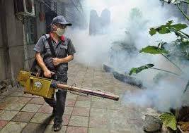 هل تريد شركة رش مبيدات حشرية بمنزلك ؟